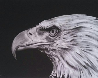 "12x18 ""Bald Eagle Profile"" Giclee Print"
