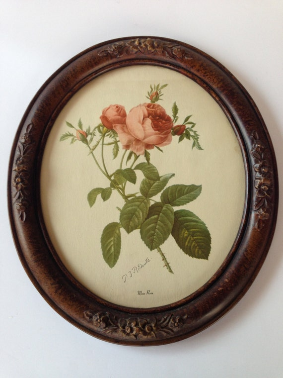 Vintage Oval Framed Print P J Redoute Moss Rose