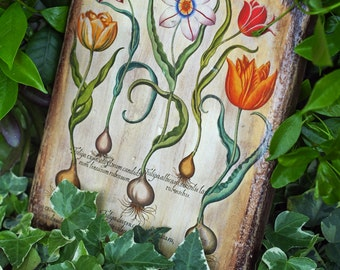 2 decorative vintage wooden tablets with tulips