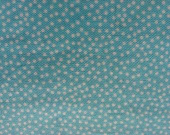 Michael Miller Garden Pindot Aqua Fabric