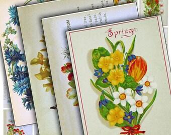 Flowers & Seasons Poetry ATCs digital collage sheet 0032