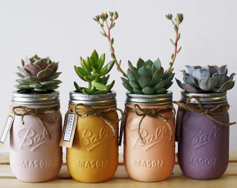 Collection of Four Hand Painted Succulent Jars(Pink, orange, apricot, purple)
