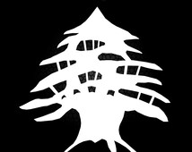 Popular Items For Lebanon Cedar Tree On Etsy