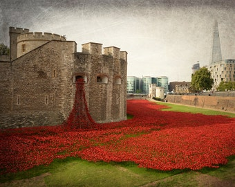 London Photography, Tower of London, Red, Poppies, Remembrance Day, London Print, Travel Photography, Europe, Castle, London Decor, Wall Art