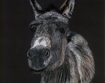 """Greetings card: """"Beach boy"""" -  donkey card, animal card, seaside donkey, ass, from a pastel painting by Dave Marsh"""