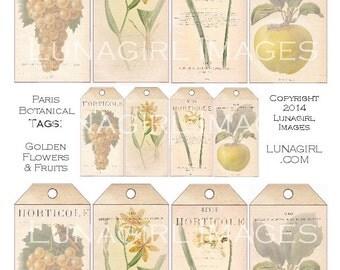 PARIS BOTANICAL TAGS Yellow Flowers Fruit digital collage sheet Download vintage images floral Victorian art card shabby ephemera printables