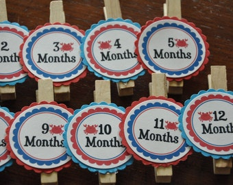 Crab Photo Clips. Crab. Photo Clips. Nautical. Ocean. First Birthday. Photo Clips. Set of 13. Newborn-12 Months. Create photo banner