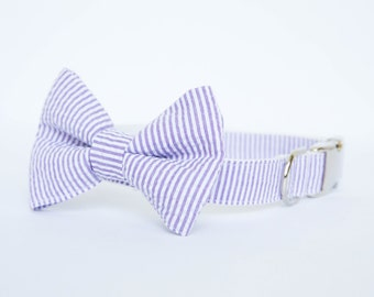Seersucker Bow Tie Dog Collar - Your Choice of Color (Purple)