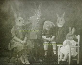 Rabbit Artwork 5x7 - Bunny Family Portrait - Rabbit Art - Rabbit Photograph - Gift for Rabbit Lover - Gift for Rabbit Owner - Bunny Art