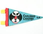 vintage 60s Carlsbad Caverns National Park New Mexico felt souvenir pennant / travel pennant / bunting banner