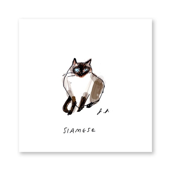 Siamese Cat Art - Cat Art Print - Home Decor