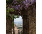 San Gimignano Gate Fine Art Photography Italy Tuscany Travel Historic Ancient Italian town Stone Walls Wisteria Romantic Landscape dreamy