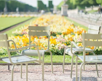 Paris Photography -  Chairs at Luxembourg Gardens, Spring in Paris, Yellow Decor, Large Wall Art, French Home Decor