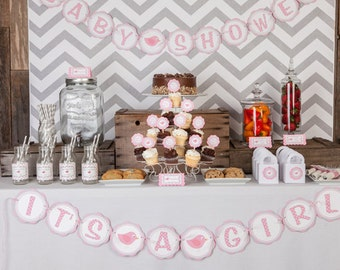 Birdie Themed BABY SHOWER It's a Girl Banner, Bird Baby Shower Decorations in Light Pink and Grey