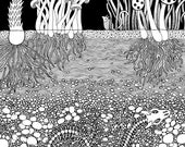 Cross-section drawing 'Mushroom patch encounter' – limited edition, archival, fine art print (digital)