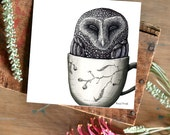 Tea Cozy Sooty Owl - ECO Limited Edition Fine Art Print