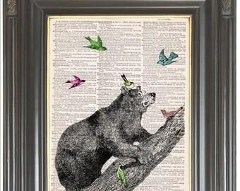 Bear wall art print on dictionary or music page Pastel Birds COUPON SALE Wall decor Sheet music Digital art print Nursery decor Item No. 742