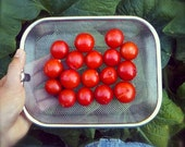 SALE! Peacevine Cherry Tomato Organically Grown Sweetest Cherry Tomato in an Heirloom/OP Variety High Vitamin C Amino Acids Content Rare See