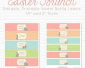 Water Bottle Labels, Easter Brunch, Bunny Party Favor, Party Supplies, Easter Party Decoration -- Editable, Printable, Instant