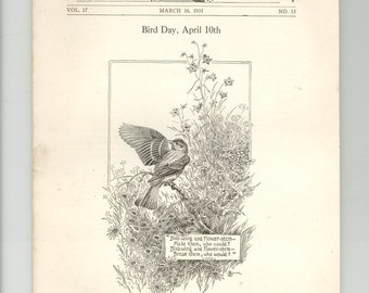 Bird Day April 10 - University of the state of New York  Bulletin 1931 Berkshire County Sanctuary King Rails & Hummingbirds Vintage Book