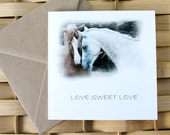 ARAB HORSES, captioned Love Sweet Love, Equine Art Card, Valentine, Greeting card, Horse photography, Rustic, fall colours