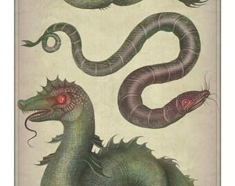 Sea Serpents -  A4 art print