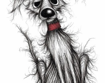 Fuzzy dog Print download Very shabby scruffy pet pooch mutt doggie with tatty fur thin tail and grumpy face Funny animal picture