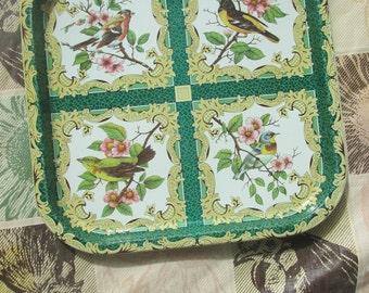 Vintage Daher decorative tin tray. Our beautiful birds.