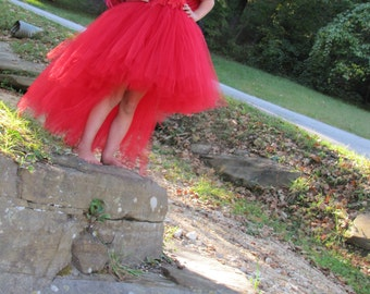 Red McCaw costume, Feather dress, Flower girl feather Tutu Dress, Bird costume, Rio Costume