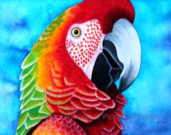 Red and Green Macaw Painting 8x10 Print 11x14 Print Bird Painting Watercolor Print Green Winged Macaw Parrot Painting Watercolor Bird