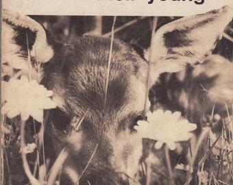 Common Wild Animals and Their Young by Rita Vandivert, William Vandivert and Carl Burger