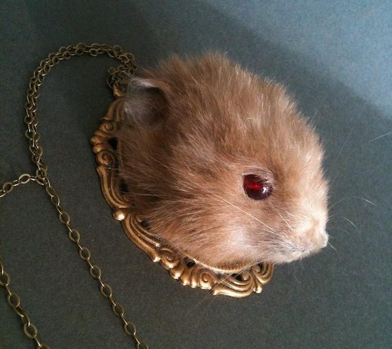 Taxidermy Teddy Bear Hamster Necklace