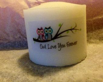 25 Baby Shower Favors,Owl Themed Shower, Owl love you forever , Wedding favors ,  Baptism , Holy Communition Favors