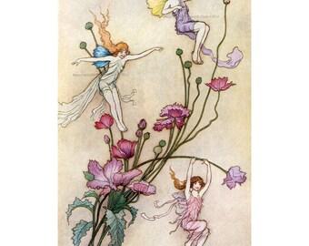 Fairies Fabric Block - Play on Flowers - Warwick Goble