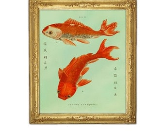 Two Goldfish Koi Print, Fish Art, Feng Shui Art, Marriage Love Prosperity Symbol, Goldfish Print, Giclee Wall Hanging, Freshwater Fish Print