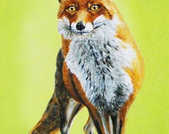 Animal painting fox portrait painting  Giclee Print Acrylic Painting Illustration  Print wall art wall decor Wall Hanging: Fox