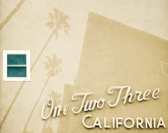 Palm Trees, Palms, Abstract,  California, Summer, Photographic Print, Kristine Cramer Photography