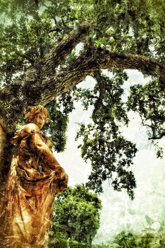 The Souls in the Trees Shot by Zen Kitten..