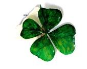 Real Green Four Leaf Clover Brooch, Green Clover, Real Clover, Green Real flower, Pressed flower Resin Brooch,  Brooch or Pendant