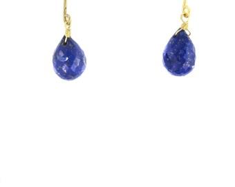 Birdhouse Jewelry- Lapis Briolette Earrings