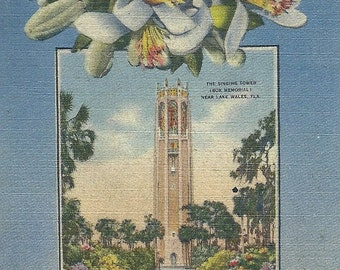 1940s Greetings From Florida Postcard Singing Tower