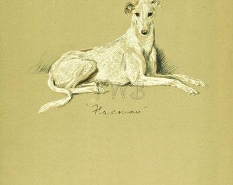 GREYHOUND Dog Print, Puppy Print, Wall Decor, Wall Art, Antique Decor, Interior Design, Lucy Dawson, 1930s Home Decor, Dog Decor, B-3