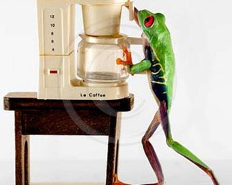 Coffee Art, Kitchen Art, Real Frog and Miniature Coffee Machine, Funny Frog Photo