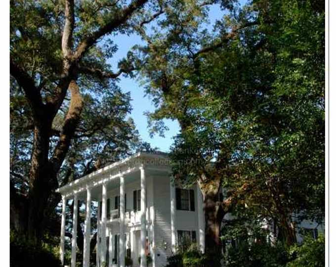 Bragg Mitchell Mansion Photograph