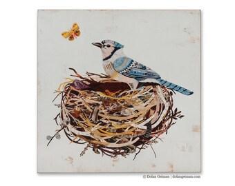 Blue Jay Birds Nest Print on Wood