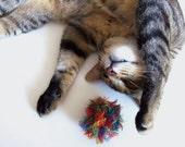 Catnip Cat Toy Ball Handmade Michigan Rainbow Colors Red Orange Yellow Green Blue Purple Rainbow Tumbleweed CurlyGirlCrochet