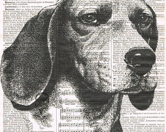 Dog.Canine.Beagle.antique book page print.vintage illustration.paris.french.gift.child.nursery.den.home deco.art.pet.mans best friend.eco.