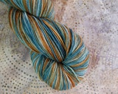 Wonder Sock yarn -We Do Not Sow  - superwash Blueface wool and nylon 465 yards 3.5 ounces