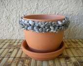 "Terra Cotta Plant Pot Rimmed with Gray Umbonium Shells, 4 1/2 "" pot"