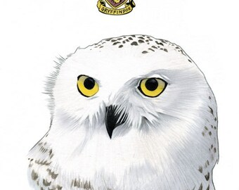 Hedwig The Owl Limited Edition Art Print by Ryan Berkley